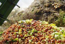 Photo of الهدر الغذائي العالمي: 1.6 مليار طن من الغذاء سنوياً
